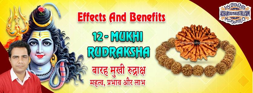 Strengths, Benefits and Importance of 12 Mukhi Rudraksha (Barah Face Rudraksha) By Acharya V Shastri.