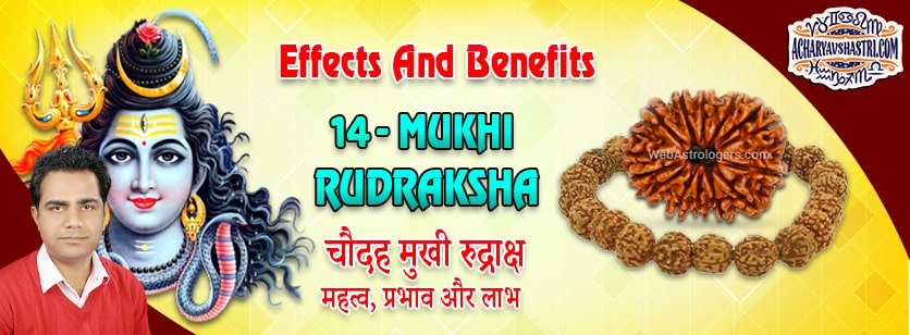 Strengths, Benefits and Importance of 14 Mukhi Rudraksha (Fourteen Face Rudraksha) By Acharya V Shastri.