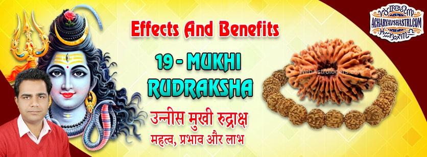Strengths, Benefits and Importance of 19 Mukhi Rudraksha (Nineteen Face Rudraksha) By Acharya V Shastri.