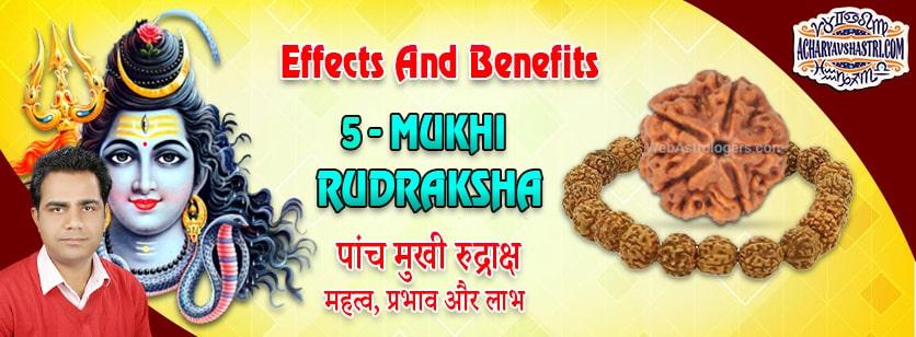 Strengths, Benefits and Importance of 5 Mukhi Rudraksha (5 -Five Face Rudraksha) By Acharya V Shastri.