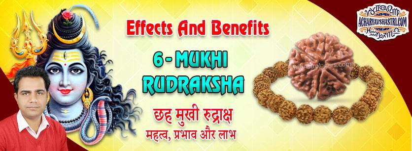 Strengths, Benefits and Importance of 6 Mukhi Rudraksha (6- Six Face Rudraksha) By Acharya V Shastri