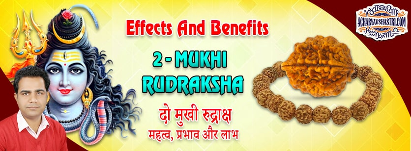 Strengths, Benefits and Importance of Do Mukhi Rudraksha (2-Two Face Rudraksha) By Acharya V Shastri