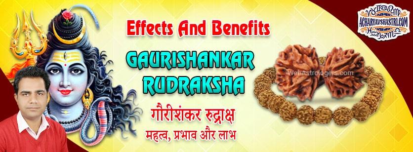 Strengths, Benefits and Importance of Gauri Shankar Rudraksha - गौरी शंकर रूद्राक्ष By Acharya V Shastri.
