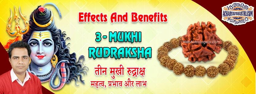 Strengths, Benefits and Importance of Teen Mukhi Rudraksha (3 - Three Face Rudraksha) By Acharya V Shastri