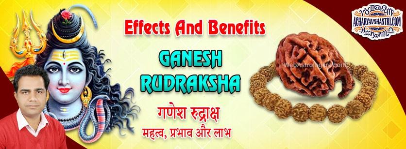 Strengths, Benefits and Importance of Ganesh Rudraksha - गणेश रुद्राक्ष By Acharya V Shastri.