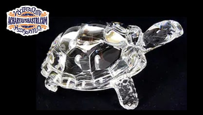 Vastu defects will be removed by keeping the tortoise in the house and there will be financial growth.