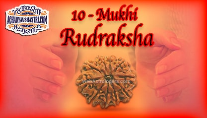 Strengths, Benefits and Importance of 10 Mukhi Rudraksha (One Face Rudraksha) By Acharya V Shastri