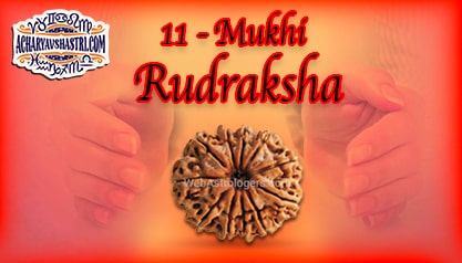 Strengths, Benefits and Importance of 11 Mukhi Rudraksha (Eleven Face Rudraksha) By Acharya V Shastri