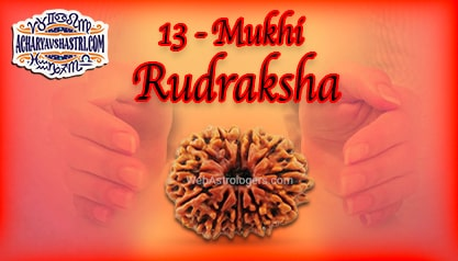 Strengths, Benefits and Importance of 13 Mukhi Rudraksha (Thirteen Face Rudraksha) By Acharya V Shastri.