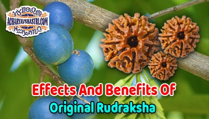 1 to 21 Mukhi Rudraksha Beads Benefits - Types of Rudraksha with Benefits and how to wearing Rudrakshas By Acharya V Shastri.