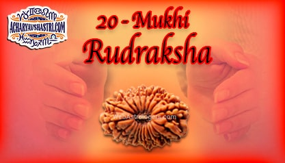 Strengths, Benefits and Importance of 20 Mukhi Rudraksha (Twenty Face Rudraksha) By Acharya V Shastri.