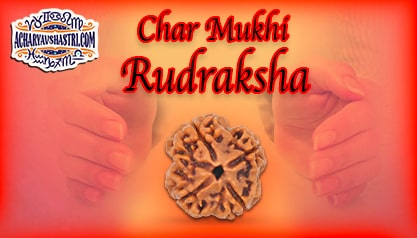 Strengths, Benefits and Importance of 4 Mukhi Rudraksha (Four Face Rudraksha) By Acharya V Shastri.