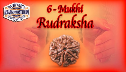 Strengths, Benefits and Importance of 6 Mukhi Rudraksha (6- Six Face Rudraksha) By Acharya V Shastri