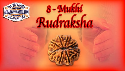 Strengths, Benefits and Importance of 8 Mukhi Rudraksha (Eight Face Rudraksha) By Acharya V Shastri.