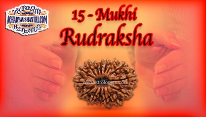 Strengths, Benefits and Importance of 15 Mukhi Rudraksha (Fifteen Face Rudraksha) By Acharya V Shastri.