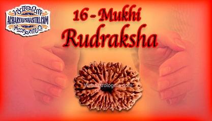 Strengths, Benefits and Importance of 16 Mukhi Rudraksha (Sixteen Face Rudraksha) By Acharya V Shastri.