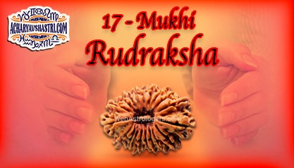 Strengths, Benefits and Importance of 17 Mukhi Rudraksha (Seventeen Face Rudraksha) By Acharya V Shastri.