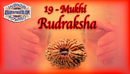 Strengths, Benefits and Importance of 19 Mukhi Rudraksha (Nineteen Face Rudraksha) By Acharya V Shastri.