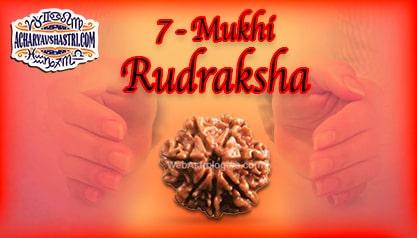 Strengths, Benefits and Importance of 7 Mukhi Rudraksha (7- Seven Face Rudraksha) By Acharya V Shastri