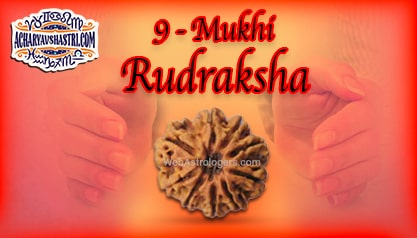 Strengths, Benefits and Importance of 9 Mukhi Rudraksha (Nine Face Rudraksha) By Acharya V Shastri