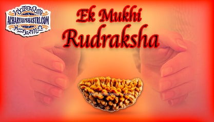 Strengths, Benefits and Importance of Ek Mukhi Rudraksha (1-One Face Rudraksha) By Acharya V Shastri