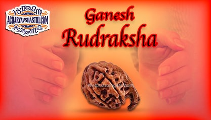 Strengths, Benefits and Importance of Ganesh Rudraksha -  गणेश रुद्राक्ष By Acharya V Shastri.