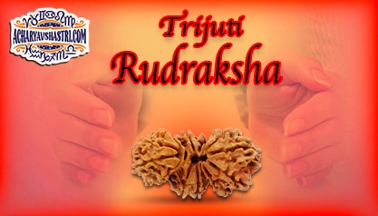 Strengths, Benefits and Importance of Trijuti Rudraksha by Acharya V Shastri.