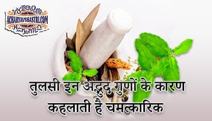 Why Tulsi is called miraculous, know its Amazing qualities - तुलसी को क्यों कहा जाता है चमत्कारिक, जानिए इसके अद्भुद गुण